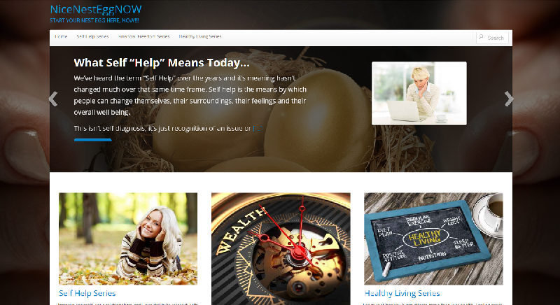 Yates Web Consulting web design for Nice Nest Egg Now utilizing WordPress modified template technology
